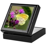 Clouded Sulfur Butterfly on Ironweed Keepsake Box