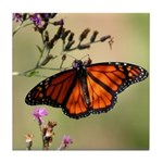 Monarch Butterfly on Ironweed Tile Coaster