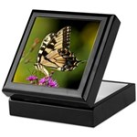 Eastern Tiger Swallowtail Butterfly Keepsake Box