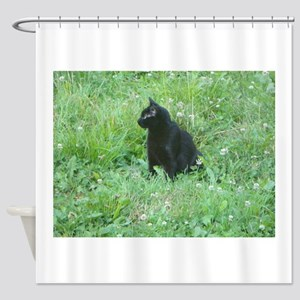 Salem Shower Curtain