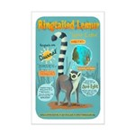 Ringtailed Lemur - Small Mini Poster Print