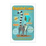 Ringtailed Lemur - Small Mini Poster Print