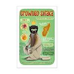 Crowned Sifaka Mini Poster Print