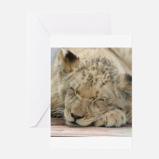 Lion20150808 Greeting Cards