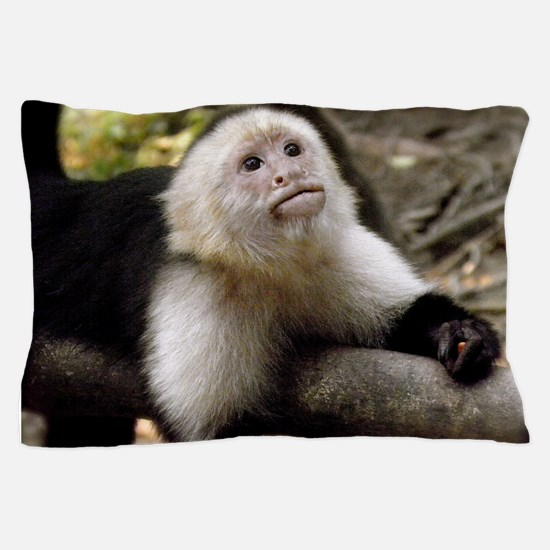Baby Capuchin Monkey Pillow Case