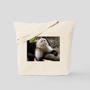 Baby Capuchin Monkey Tote Bag