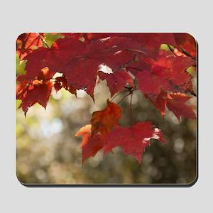 Fall Foliage Mousepad