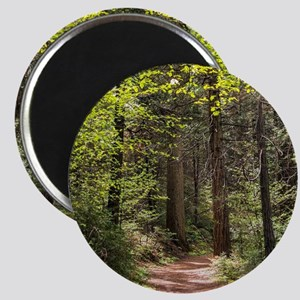 Forest Trail Magnet