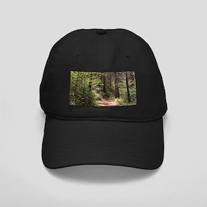 Forest Trail Black Cap