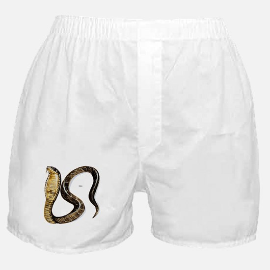 Cobra Snake Boxer Shorts