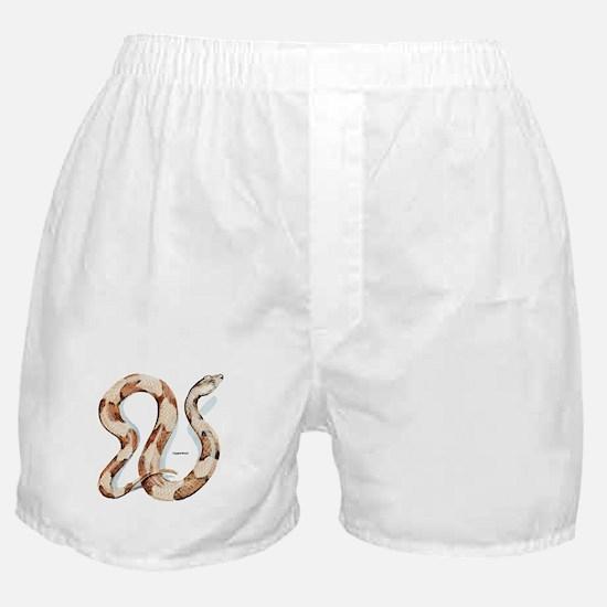 Copperhead Snake Boxer Shorts