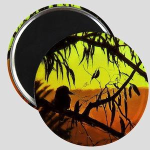 Sunset Kookaburra Silhouette Magnets