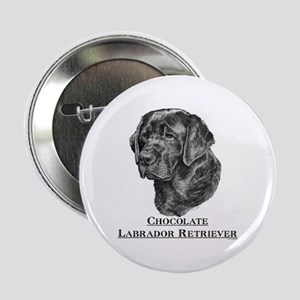 Chocolate Lab Breed Button
