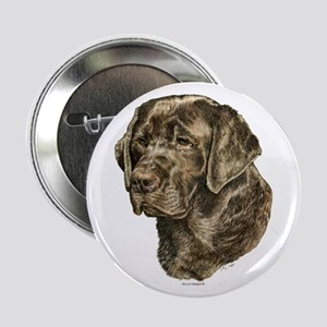 Chocolate Labrador Retriever Button