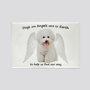 Bichons are Angels Magnets