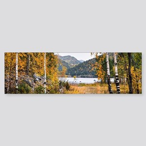 Autumn Lake View Bumper Sticker