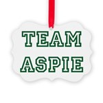 Team Aspie Picture Ornament