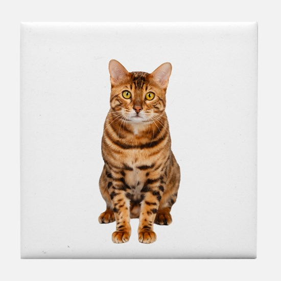 Funny Hipster cat Tile Coaster