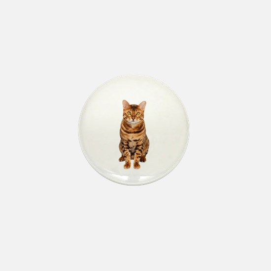 Amazing Bengal Kitten Mini Button