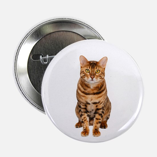 "Amazing Bengal Kitten 2.25"" Button"