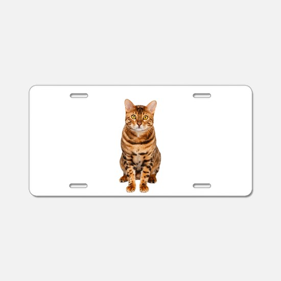 Amazing Bengal Kitten Aluminum License Plate