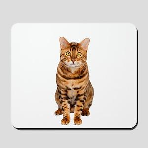 Amazing Bengal Kitten Mousepad