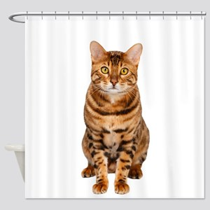 Amazing Bengal Kitten Shower Curtain