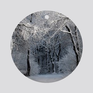 Winter Round Ornament