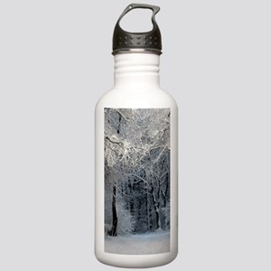 Winter Stainless Water Bottle 1.0L