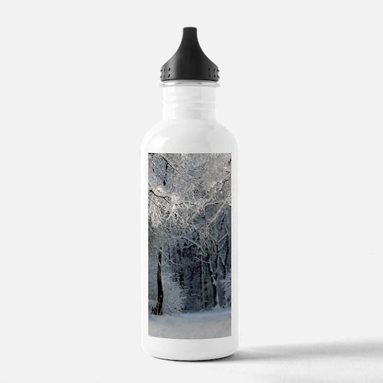 Winter Water Bottle