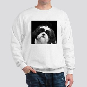 Shih Tzu Dog Sweatshirt