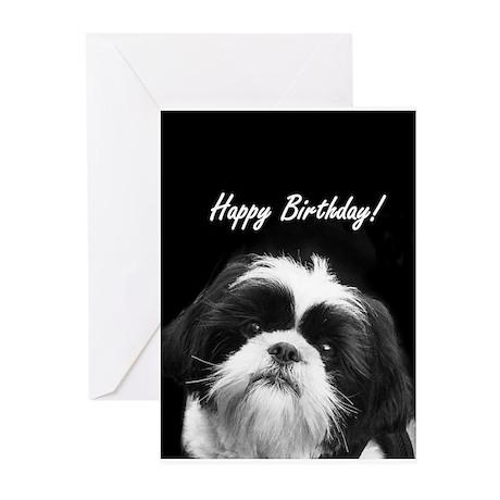 Birthday Shih Tzu Greeting Cards By Admincp6582520