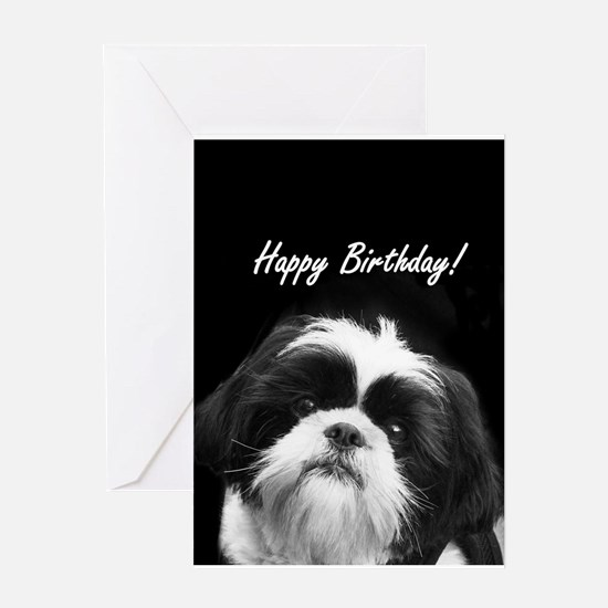 Birthday Shih Tzu Greeting Cards