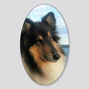 Collie by the Ocean Sticker (Oval)