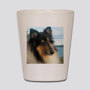 Collie by the Ocean Shot Glass