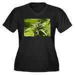Harlequin Plus Size T-Shirt