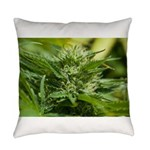 Boost Everyday Pillow