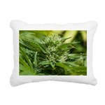 Boost Rectangular Canvas Pillow