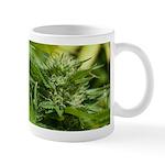 Boost Mug