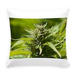 Harlequin Everyday Pillow