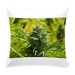 Joseph OG Everyday Pillow