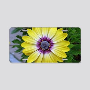 Pretty as Sunshine Aluminum License Plate