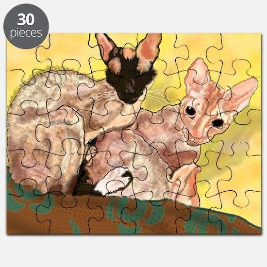 Phillip Puzzle