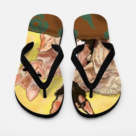 Cool Phillip Flip Flops