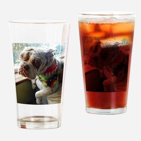 Olde English Bulldogge Drinking Glass