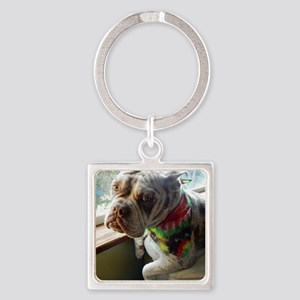 Olde English Bulldogge Keychains