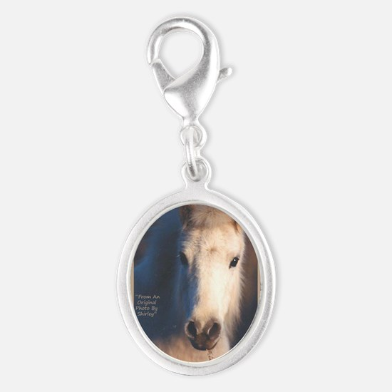 Horse-White-Pony-Wild-Art Charms