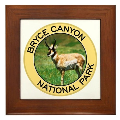 Bryce Canyon NP (Pronghorn Antelope) Framed Tile
