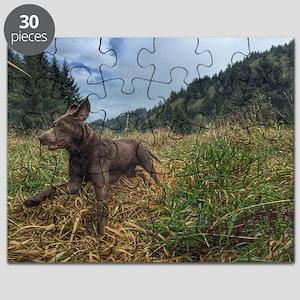 Field work Puzzle