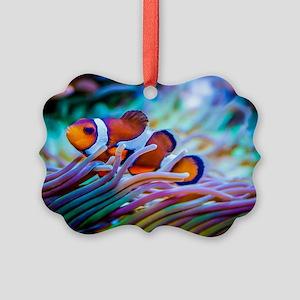 Clownfish Picture Ornament